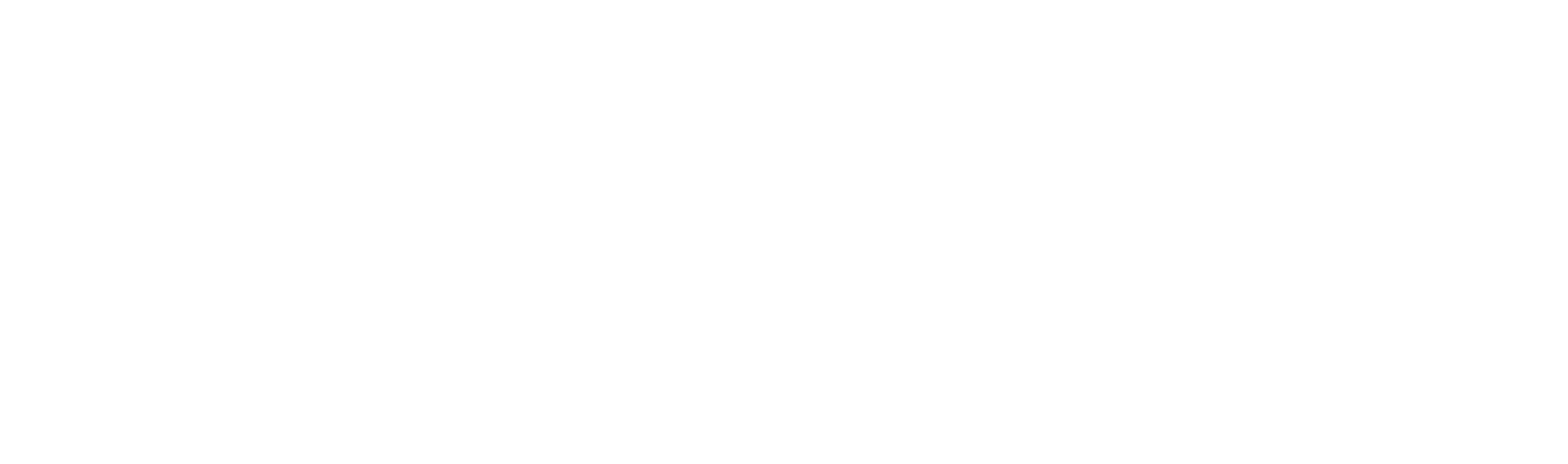 NADYA GROUP LTD.